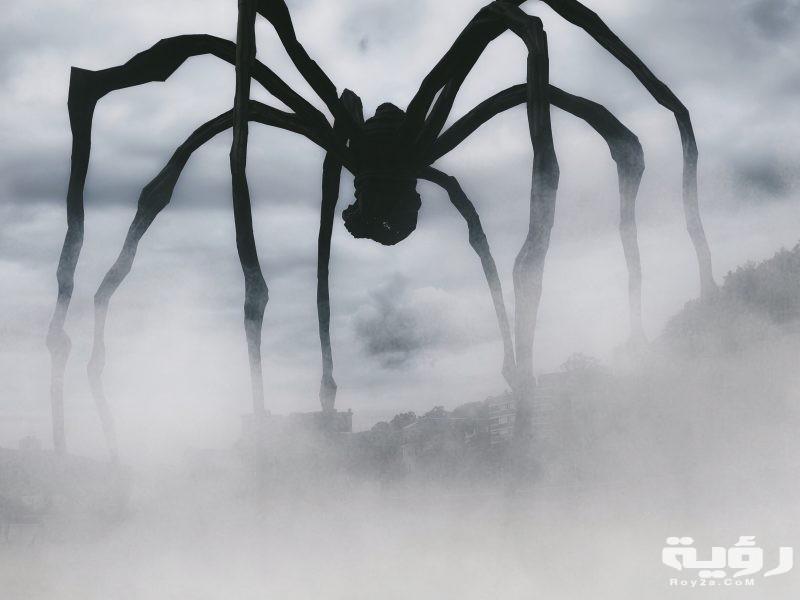 تفسير رؤية لدغة العنكبوت في الحلم