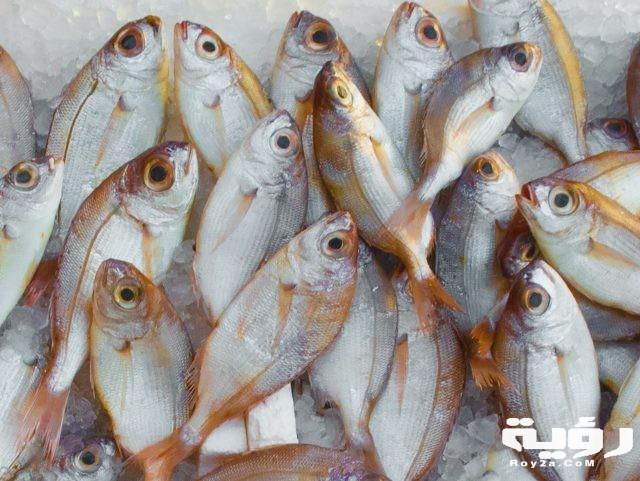 تفسير رؤية شراء السمك في الحلم موقع رؤية