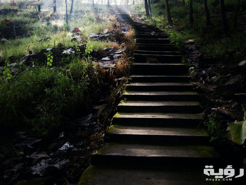 تفسير رؤية الدرج في الحلم