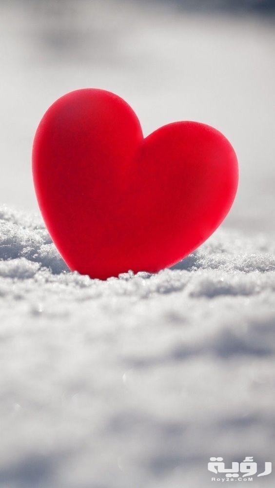 صور خلفيات قلوب حب 2021