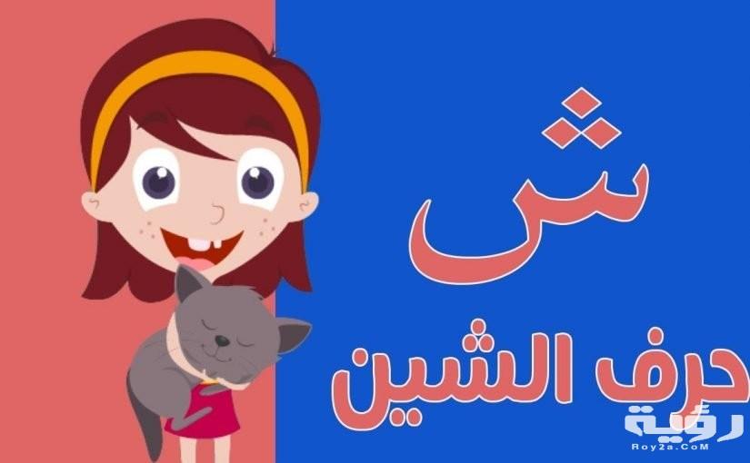 اسماء حيوانات بحرف ش الشين مميزة