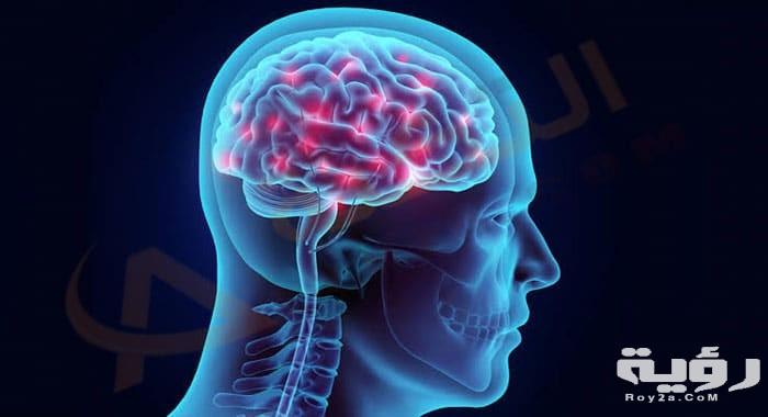 تفسير رؤية الدماغ