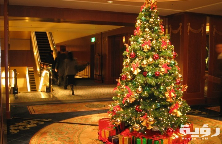 تفسير رؤية شجرة عيد الميلاد